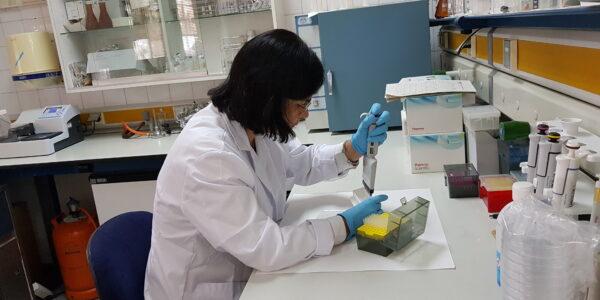 laboratorios sanidad vegetal (2)