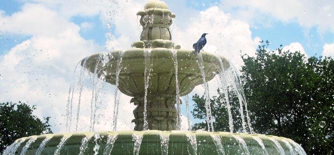 Mal uso y consumo del agua en las ciudades