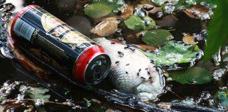 Nuevo respaldo internacional a la lucha contra la basura en la naturaleza