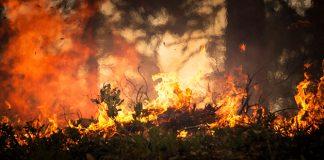 El fuego arrasa California