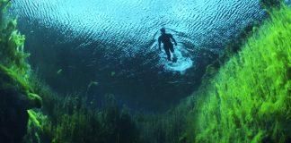 ¿Cuáles son los ecosistemas más amenazados del mundo?