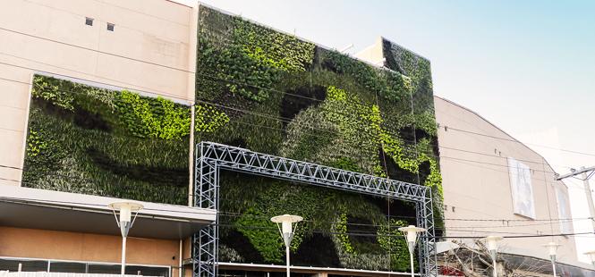 Jardines verticales contra el cambio climático