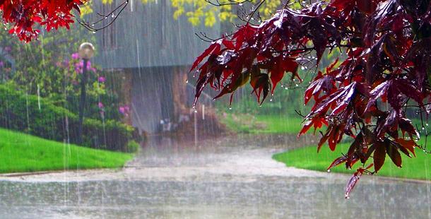 Las lluvias y la nieve dan una tregua a la sequía