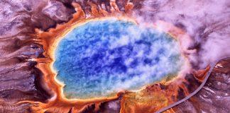 ¿Cuál fue el comienzo de todos los seres vivos?