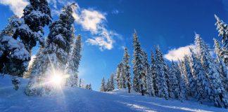 Datos interesantes que quizás no sabías sobre el invierno