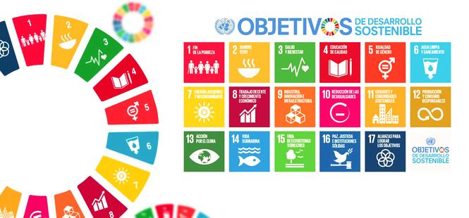 El papel fundamental de los ODS
