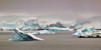 La ampliación de la gran reserva marina del océano Antártico deberá seguir esperando