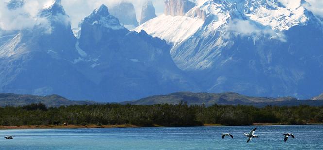 La Patagonia es clave para conservar la biodiversidad y mitigar el cambio climático