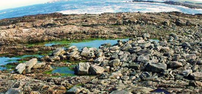 ¿Cómo llegaron estas rocas gigantes a la costa de Irlanda?