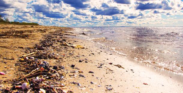 La importancia de cuidar el mar