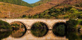 Los ríos están contaminados en gran medida por drogas y fármacos