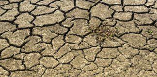 ¿Es posible sacar algún aspecto positivo de la sequía?
