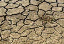 Prevenir la escasez de agua para el futuro