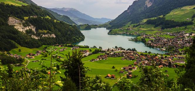 Suiza, verde: Un mercado dinámico